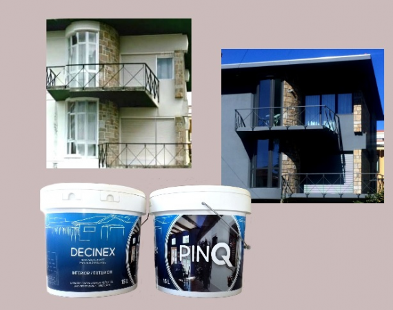 PINQ- DECINEX- Tinta Plástica Interior/Exterior